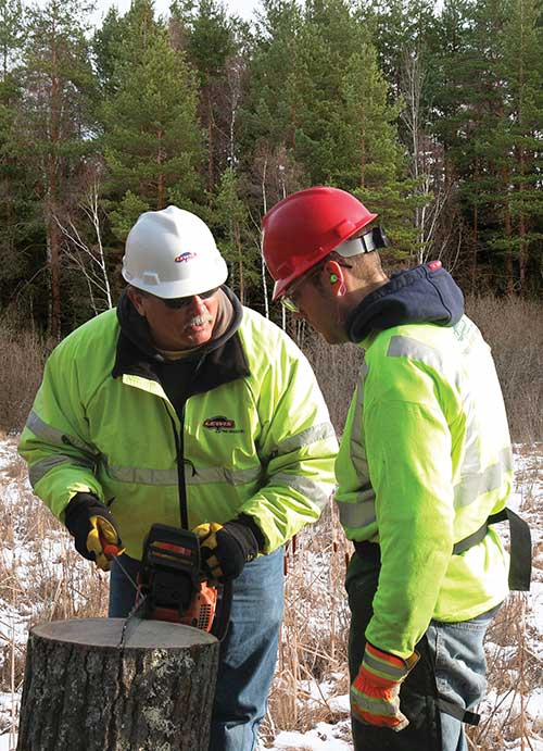 Total safety culture in-field training for utility line clearance crew member