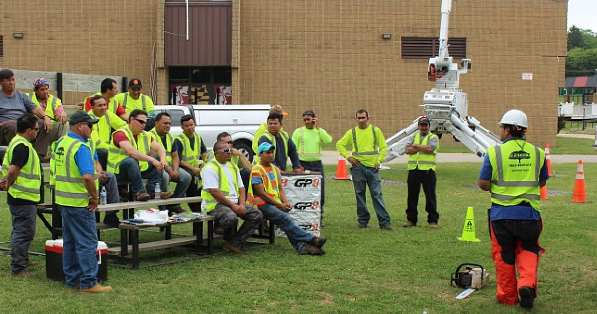Lewis Tree employees receiving continuous on-the-job training