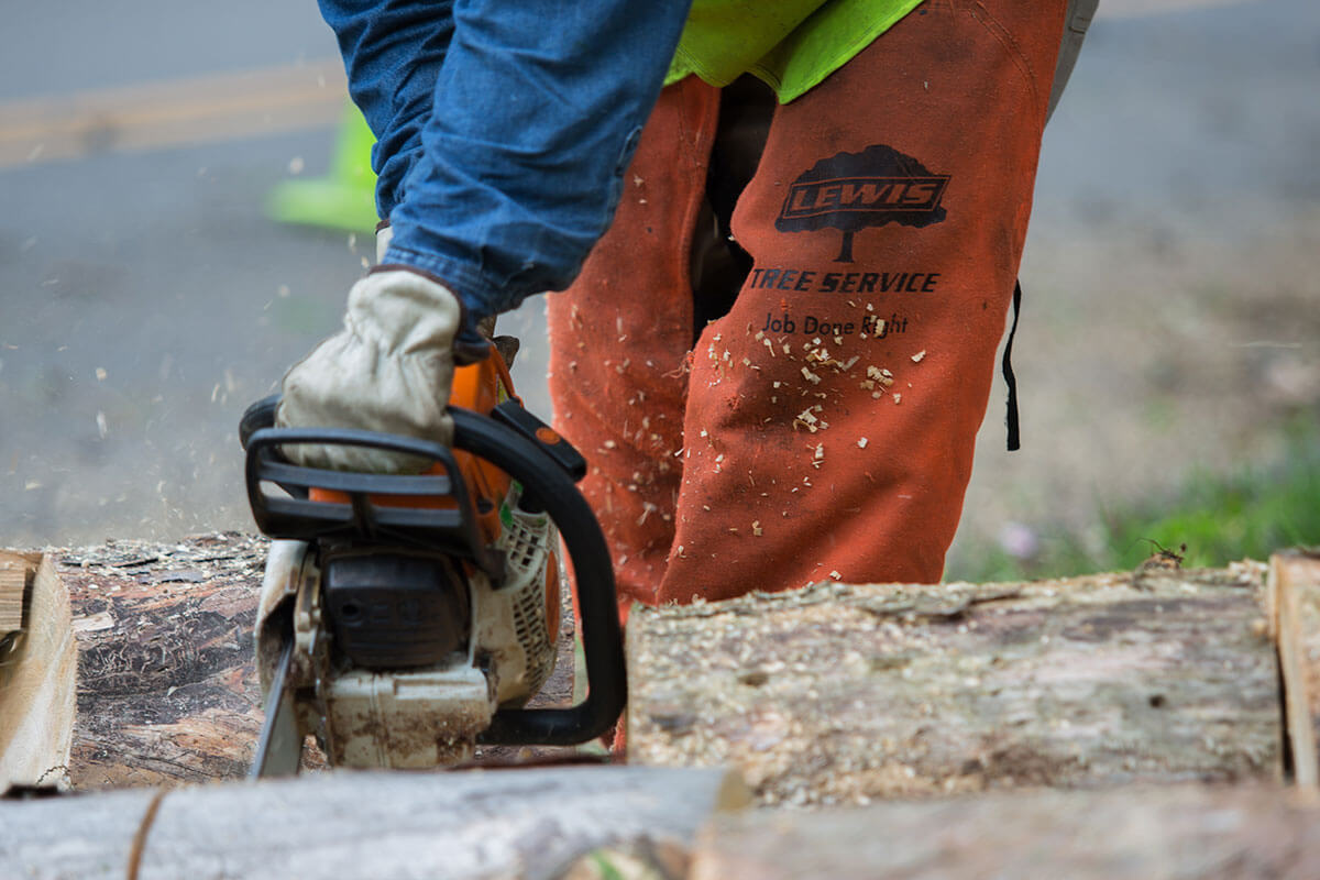 Lewis Tree crews get the Job Done Right and done safely when providing tree removal and vegetation management services
