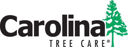 Carolina Tree Services Logo